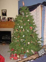 The 2006 Christmas Tree