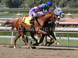 I'll Have Another wins the Santa Anita Derby