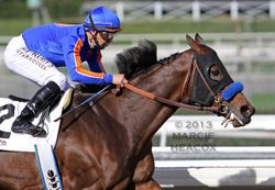 Game on Dude wins the San Antonio Stakes Again