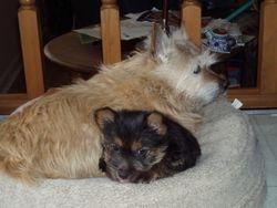 Kera and Phoenix