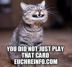 You did not just play that card.