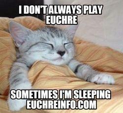 I don't always play Euchre...sometimes I'm sleeping.