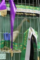 Champion Bird in Show