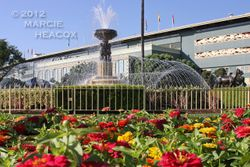 Flowers and Fountain