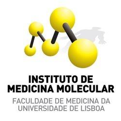 IMM logo positive-1