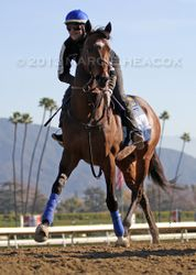Paynter's First Day Back on Track 2