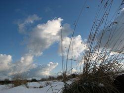 Jan 10, snow 1