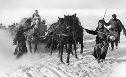 Horse drawn Supplies transport: