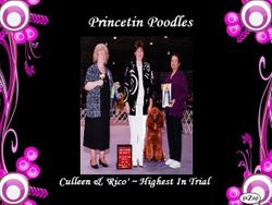 """Culleen & """"Rico Suavae"""" took HIGH IN TRIAL in Obedience out of 64 dogs"""