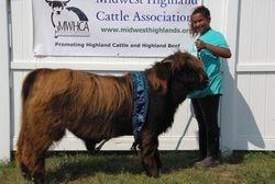 Reserve Champion Senior Bull Calf Big Ridge Fierdy