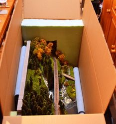 Diorama packed in doublelayer carton box,with securing foam in place