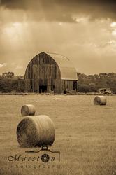 Missouri Barn Sepia