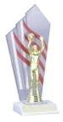 Column Trophies