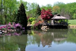 Brookside Gardens Teahouse Spring