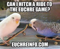 Can I hitch a ride to the Euchre game?