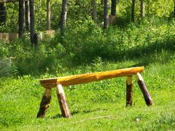 garden bench,poplar plank and round legs with natural changes of the shape