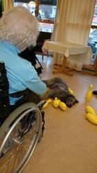 Bowling med terapihund 1