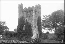 Walshestown Castle, Strangford, County Down