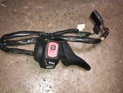 2007 F 1000 Throttle control