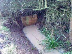 Rawreth Lane Ditch