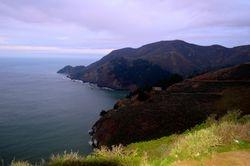 Lavender Shoreline