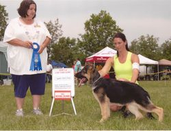 BEST PUPPY IN SPECIALTY SHOW HEATHERHAUS'S ODE TO MIKEY