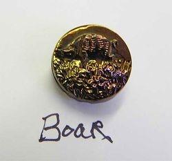 Boar button