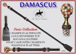 Damascus Paris Cane