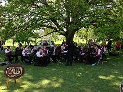 Cherry Blossom Spring Celebration 2012