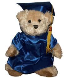 Bear in grad outfit - display only