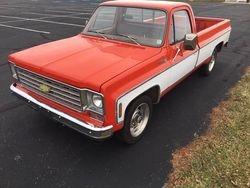 12. 76 Chevy c10 Scottsdale