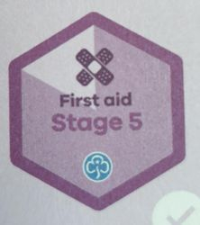 First Aid Stage 5 Skill Builder