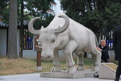 Chinese man with bull in garden at Pan Pacific Hotel in Suzhou