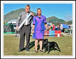 Eastern Bay of Plenty Kennel Association 2012