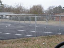 6 Ft. Chain Link