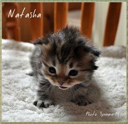 Natasha 3 weeks