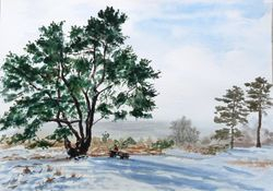 Leith Hill in winter 2