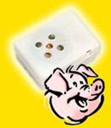 Piggy Oink ( Sound Module )