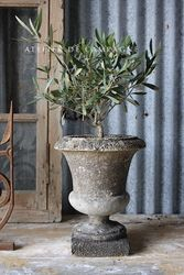 #27/083 PAIR OF FRENCH CONCRETE URNS DETAIL