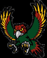 Free State High School Firebird Logo