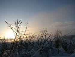 Jan 10, sunset snow 5