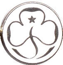 1992 - 2002 Young Leader Promise Badge