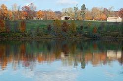 Black Hill Regional Park  4