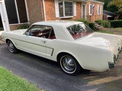 10.64 1/2 Mustang