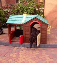 """The Dog House""  play house"