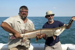 """Caught on 6"""" Enforcer Fins & Grins-35+ Lbs"""