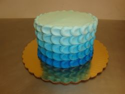 6 inch ombre $60