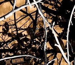 WTP 536 Outshine Camo
