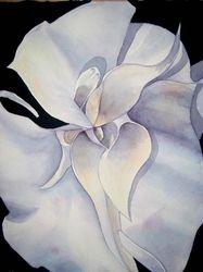 Trumpet Flower   I/D 306C