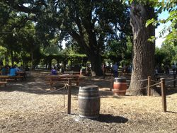 BBQ grounds